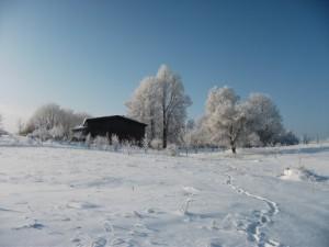 grudzien 2010 w Kierzkowie 012