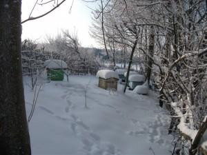 grudzien 2010 w Kierzkowie 028